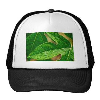 leaves me out trucker hat