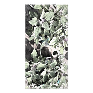 Leaves of 2 plants photo card