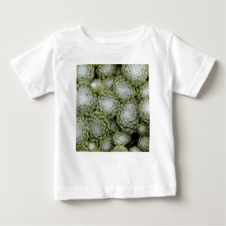Leaves of a cobweb house leek, Sempervivum arachno Baby T-Shirt