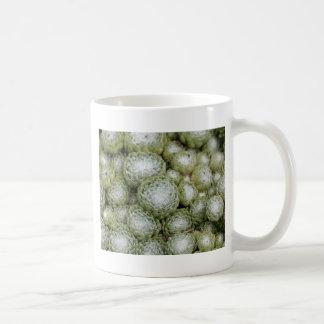 Leaves of a cobweb house leek, Sempervivum arachno Coffee Mug