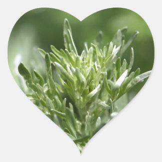 Leaves of absinthe heart sticker