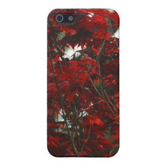 Leaves of Fire iPhone SE/5/5s Cover