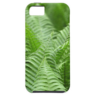 Leaves of Polystichum ferns iPhone SE/5/5s Case