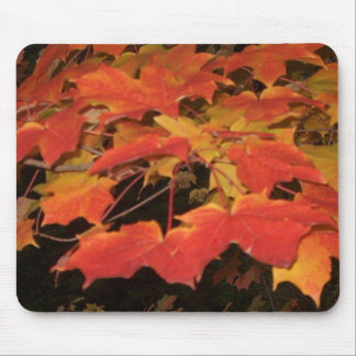 LEAVES of RED & GOLD by SHARON SHARPE Mouse Pad