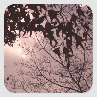 Leaves of the Trees in an Amazing Sky CricketDiane Square Sticker