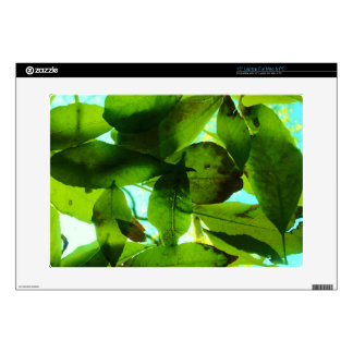Leaves on blue sky laptop decal