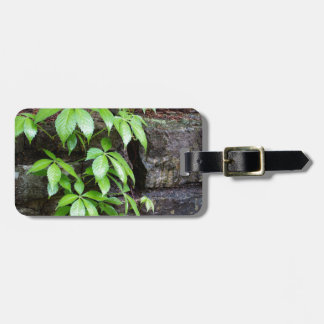 Leaves on Old Stone Wall Bag Tag