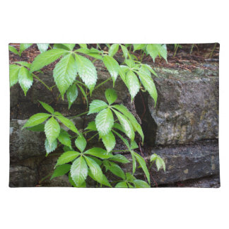 Leaves on Old Stone Wall Cloth Placemat