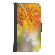 Leaves on the branches in the autumn forest galaxy s4 wallets