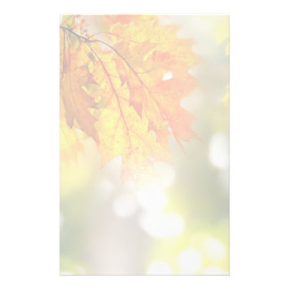 Leaves on the branches in the autumn forest stationery