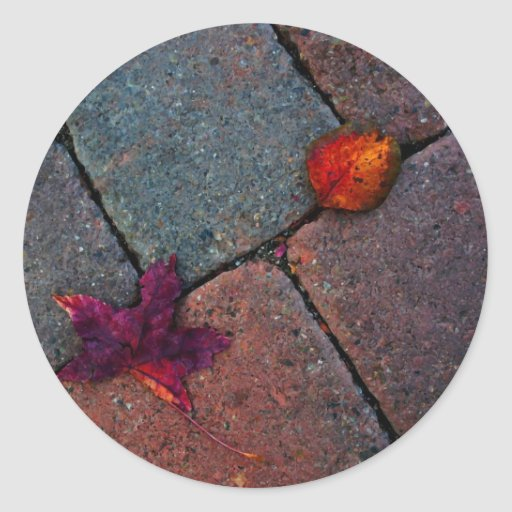 Leaves on the Pavement Round Sticker