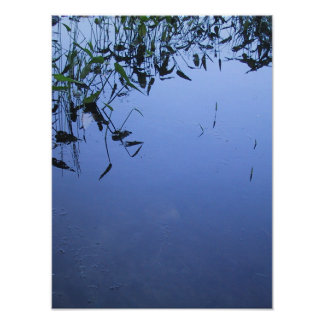 Leaves on the Water Poster