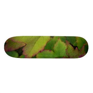 Leaves Skateboard Decks
