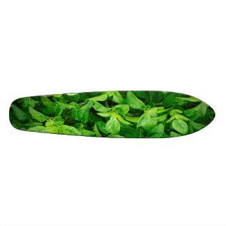 Leaves Skateboard 2