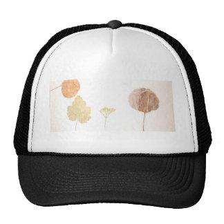 Leaves Under Tissue.jpg Trucker Hat