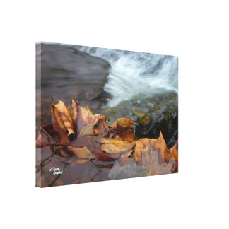 Leaves waterfall Stretched Canvas Print