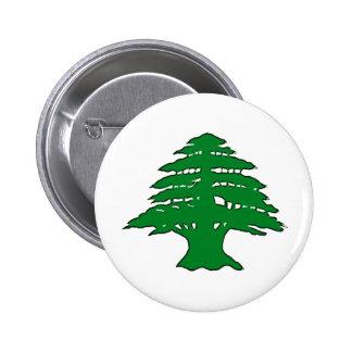 Lebanese Cedar Pinback Button