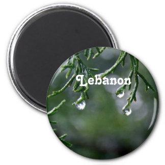 Lebanon Fridge Magnet