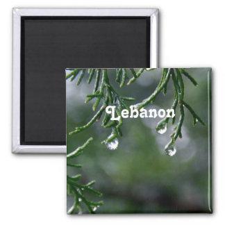 Lebanon Refrigerator Magnet