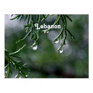Lebanon Post Card