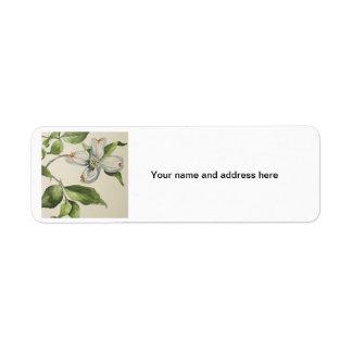 Lebels botánicos de la dirección etiqueta de remite