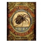 Leche de la araña tarjetas postales