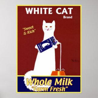 Leche entera de la marca blanca del gato póster