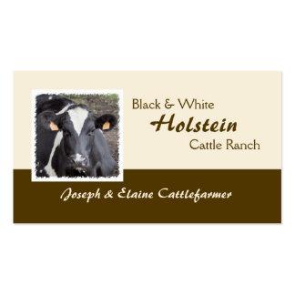Lechería de Holstein o foto de los ganados vacunos Tarjetas De Visita