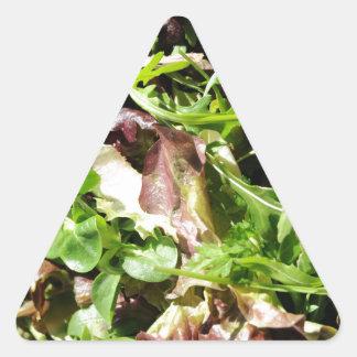 Lechuga Pegatina Triangular