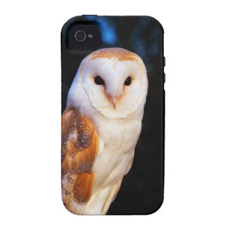 Lechuza común 2 Case-Mate iPhone 4 fundas