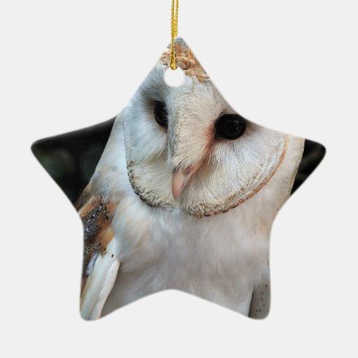 Lechuza común blanca adorno de cerámica en forma de estrella