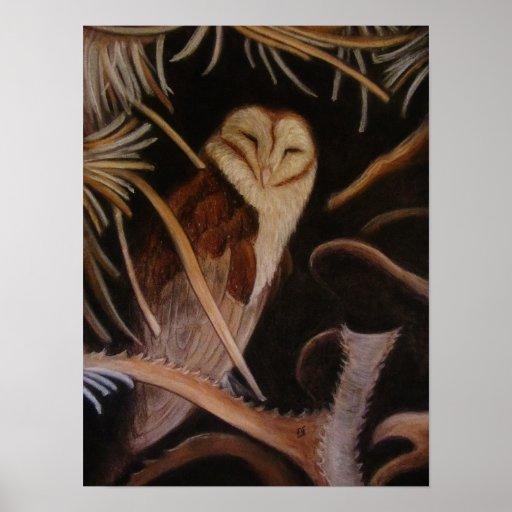 lechuza común el dormir en la pintura animal en póster