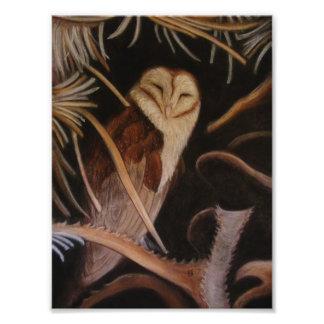 lechuza común en la pintura animal en colores past fotografías