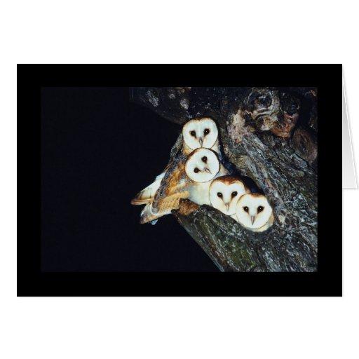 Lechuzas comunes en un árbol tarjeta de felicitación
