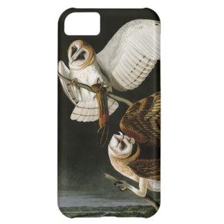 Lechuzas comunes Illustratation (Audubon) del Funda Para iPhone 5C