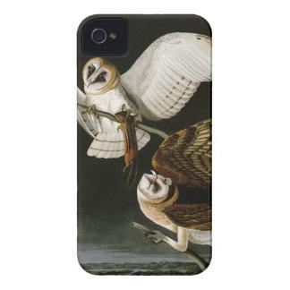 Lechuzas comunes Illustratation (Audubon) del iPhone 4 Case-Mate Protector