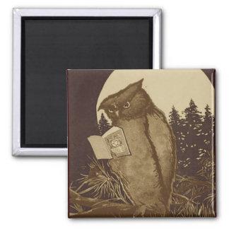 Lectura del búho por claro de luna imán cuadrado