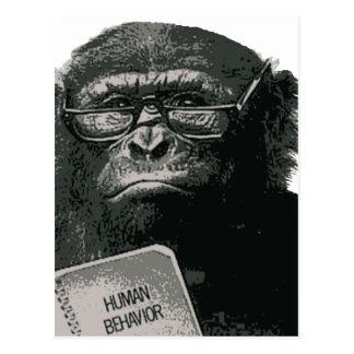 Lectura del chimpancé tarjeta postal