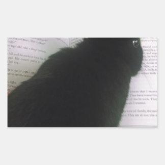 Lectura del conejito rectangular pegatina