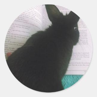Lectura del conejito pegatina redonda