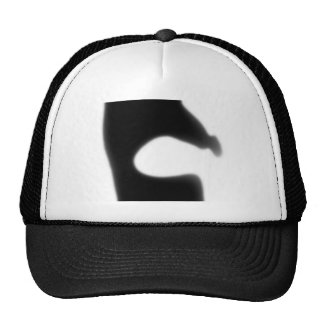 Lecture Trucker Hats