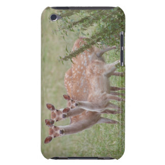 led Deer with Fawn Barely There iPod Cases