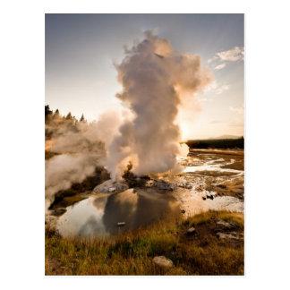 Ledge Geyser, Norris Geyser Basin Postcards
