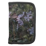 Ledges State Park Violet Flowers Folio Planners