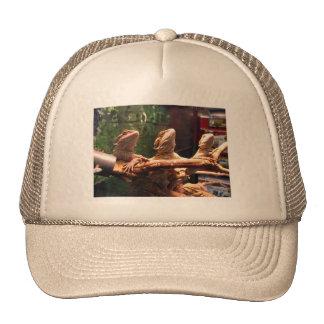 Leezard Trio Trucker Hat