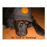 Left Behind This Halloween Postcard