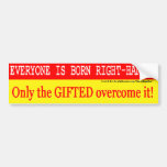 Left Handed Giftedness Bumper Stickers