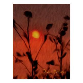 Left-Handed Sundown Postcard