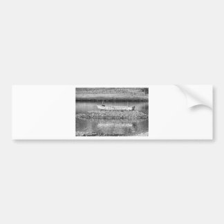 Left Over From The Flood in Black and White Car Bumper Sticker