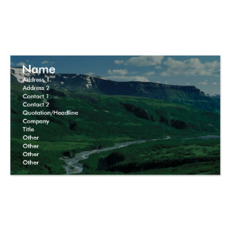 Lefthand Valley Wilderness Area in Summer Business Card